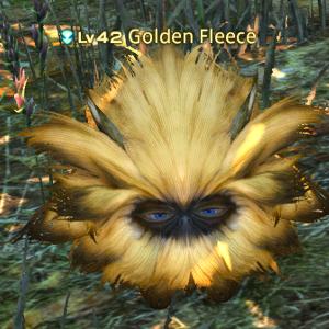 goldenfleece