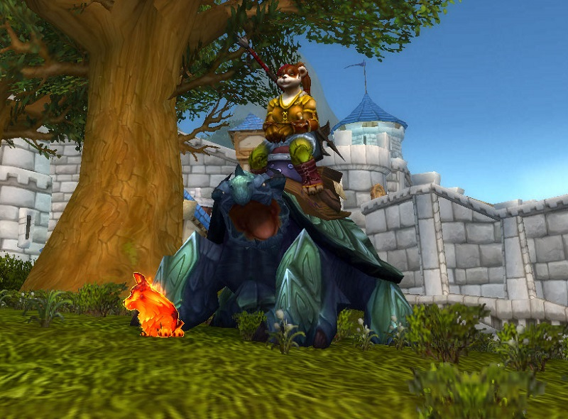 Turtle dragon mount and corgi pet - check!