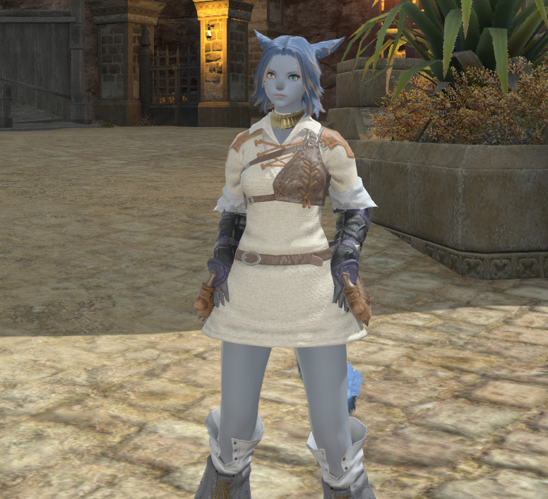 Leveling and learning Pugilist.