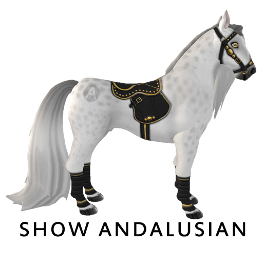 Show_Andalusian1